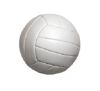 WSHS- Volleyball Summer Camp